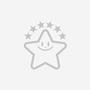 ロクトサイエンスレクチャー【暗黒の宇宙と私たちのルーツ:アルマ望遠鏡が解き明かす謎】特設ページ