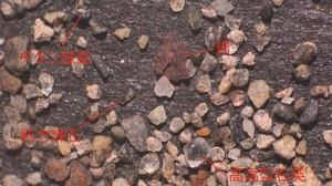 鉱物写真1月 HP