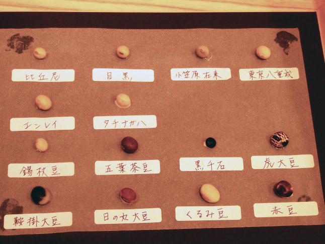 大豆図鑑完成1